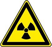 Strahlung (365 Tage Lizenz) Russisch