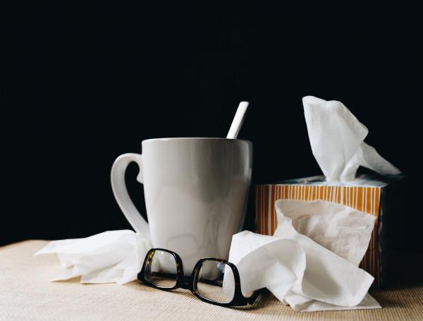 Infektionsschutzgesetz §42 (365 Tage Lizenz)